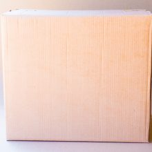 caixa-2-60x40x50-2